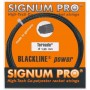 Signum Pro Tornado Set 12,00m 1,23mm schwarz