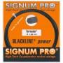 Signum Pro Tornado Set 12,00m 1,29mm schwarz